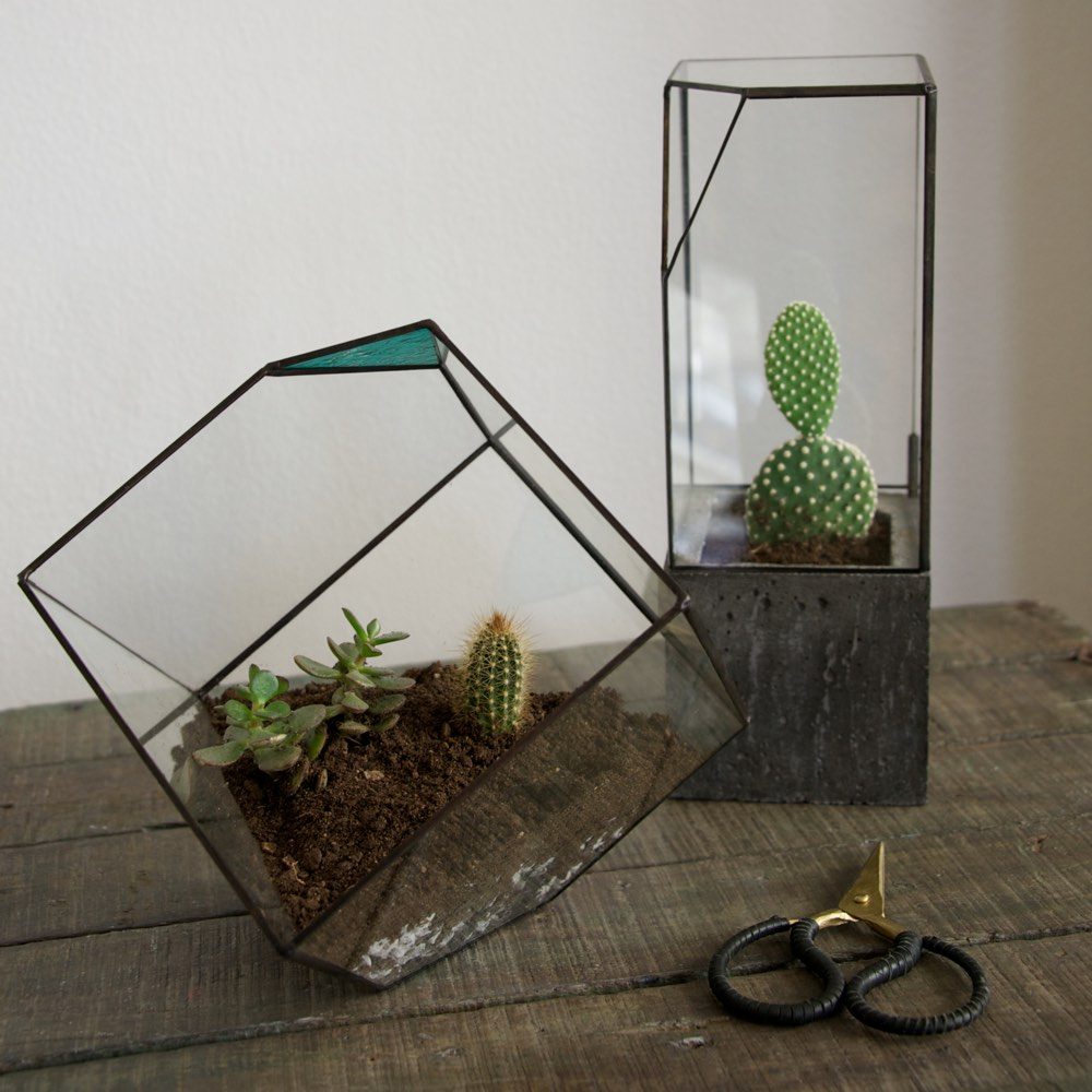 concrete glass terrarium midi garden outdoor