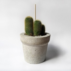 Concrete Planter Medium