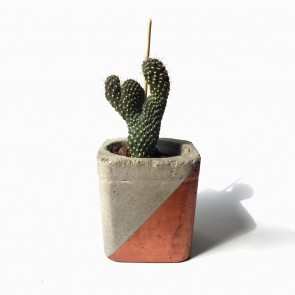 Concrete Copper Planter