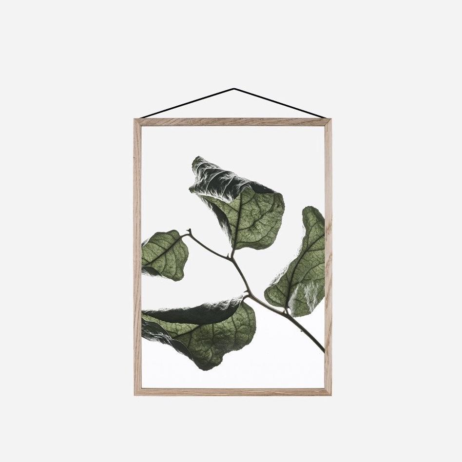 Transparent Floating Leaves A4