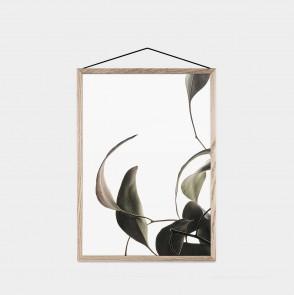 Transparent Floating Leaves A3