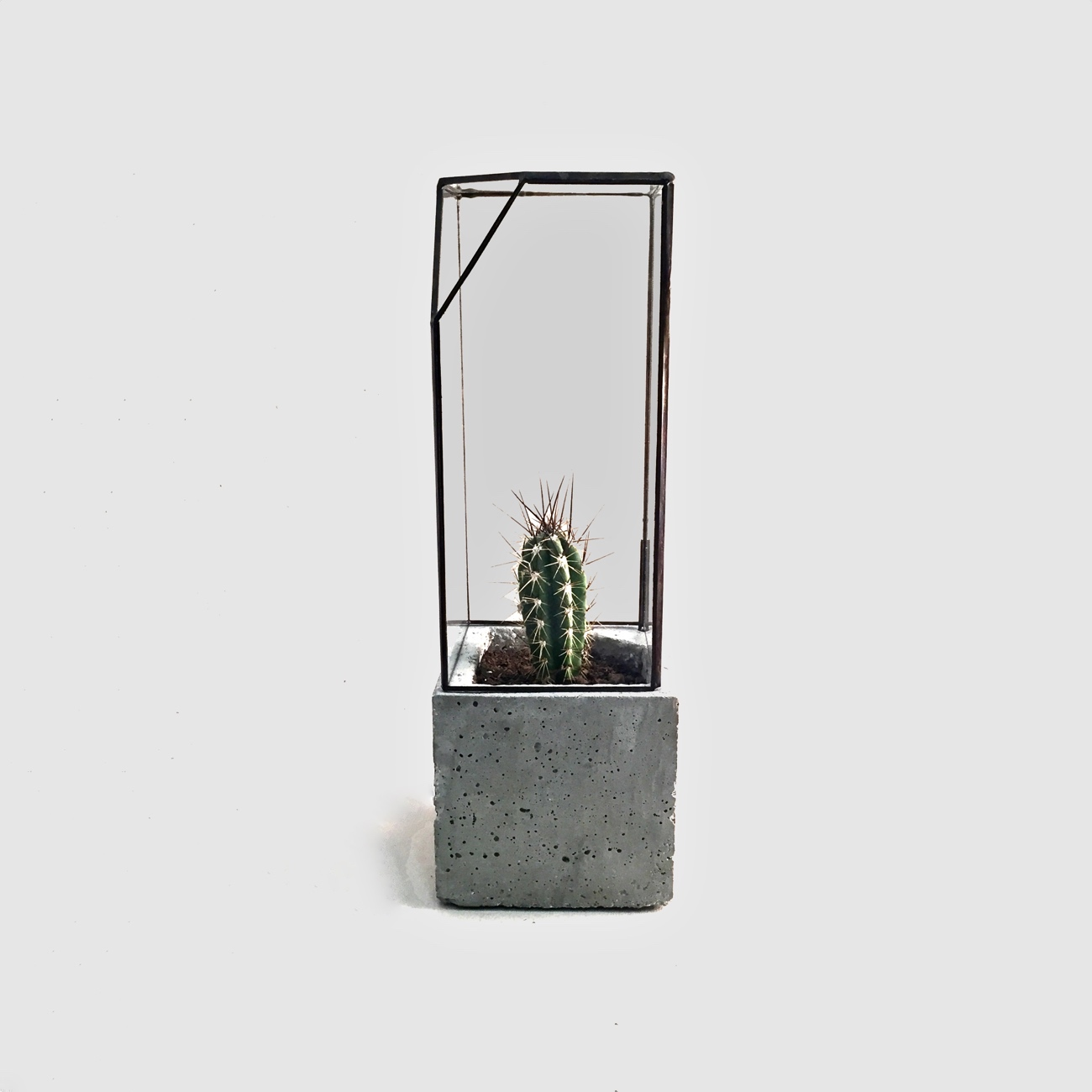 Concrete & Glass Terrarium Midi