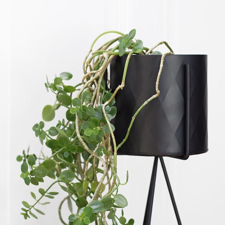 Harlequin plant pot black small