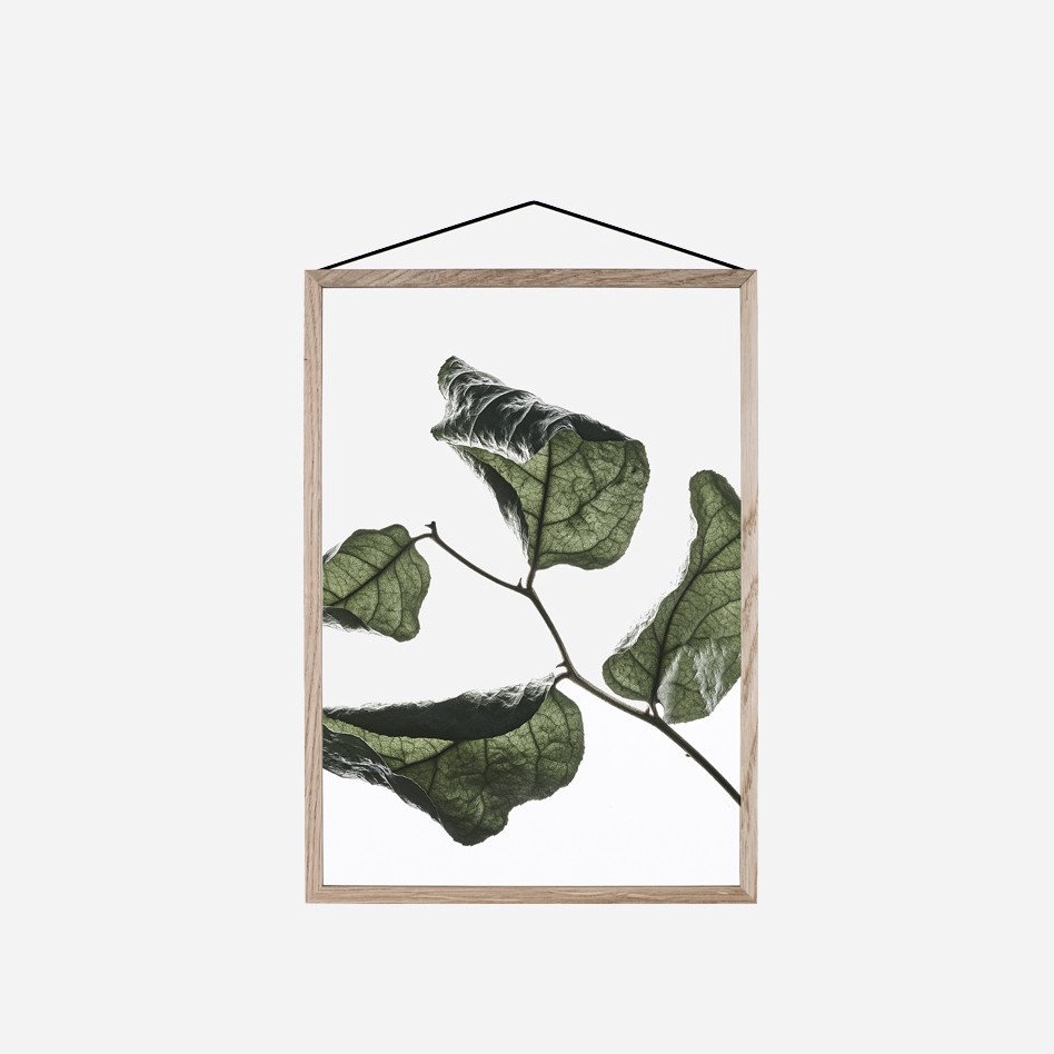 Transparent Floating Leaves A4