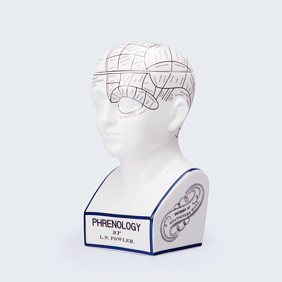 Phrenology Storage Box
