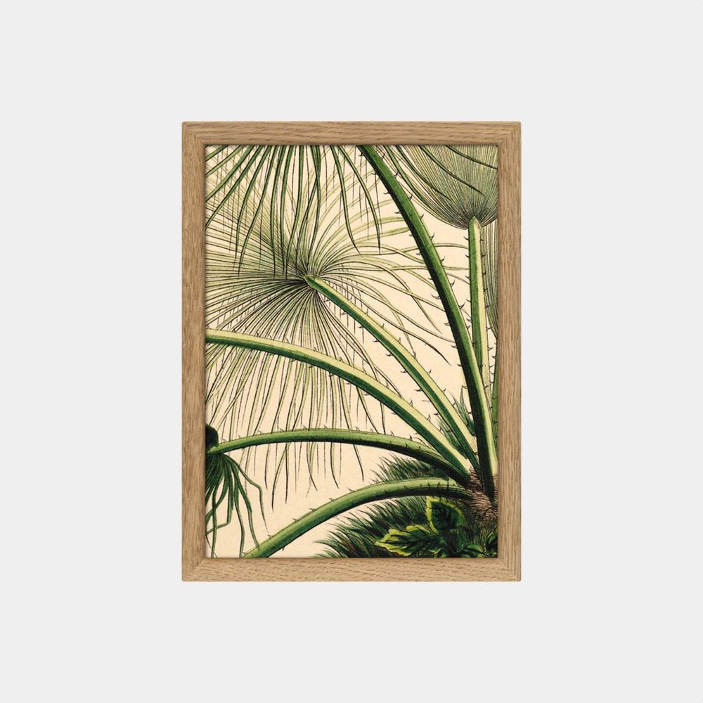 Palm Detail Mini Print vol.1