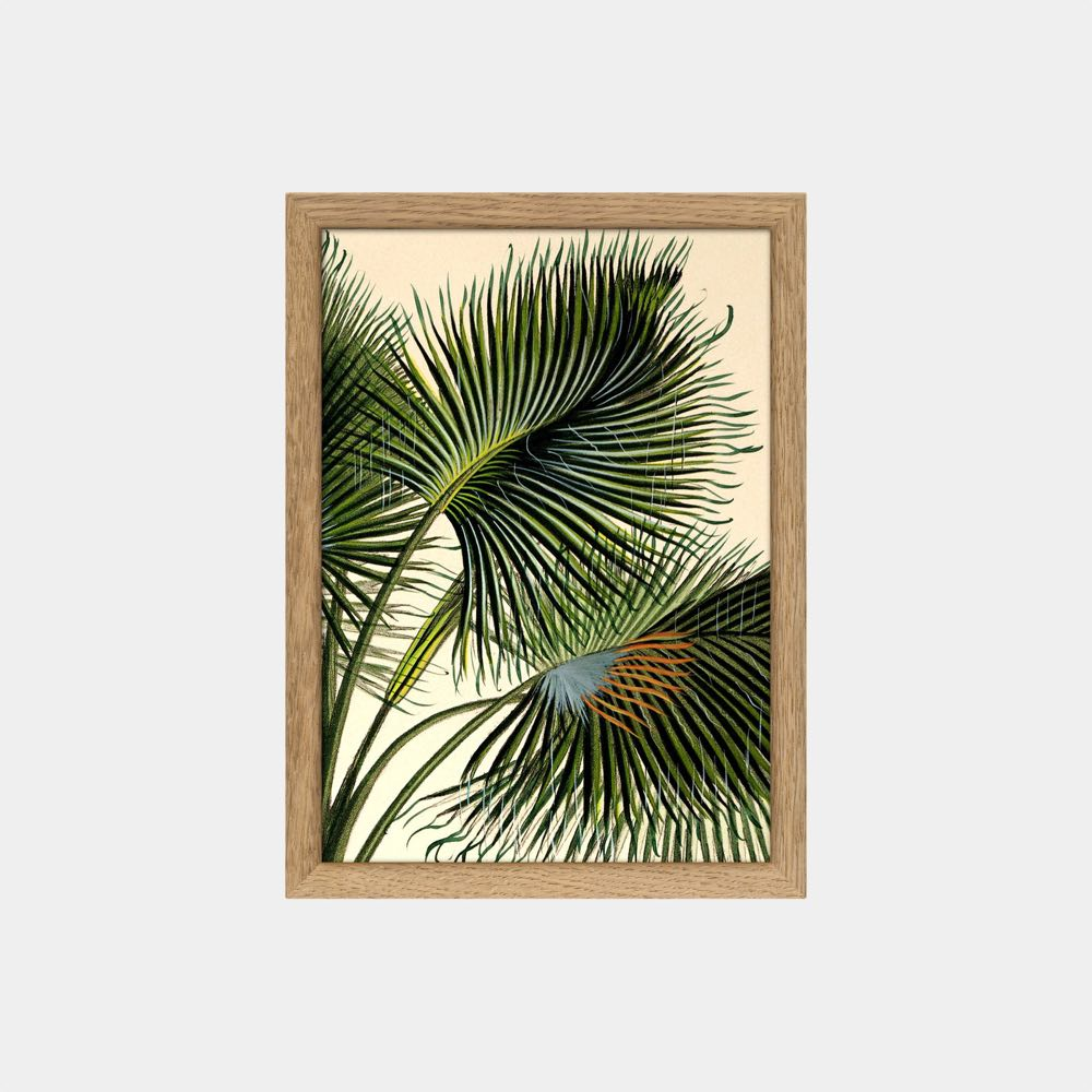 Palm Detail Mini Print vol.2