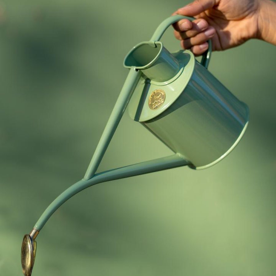 Watering Can 1L Sage