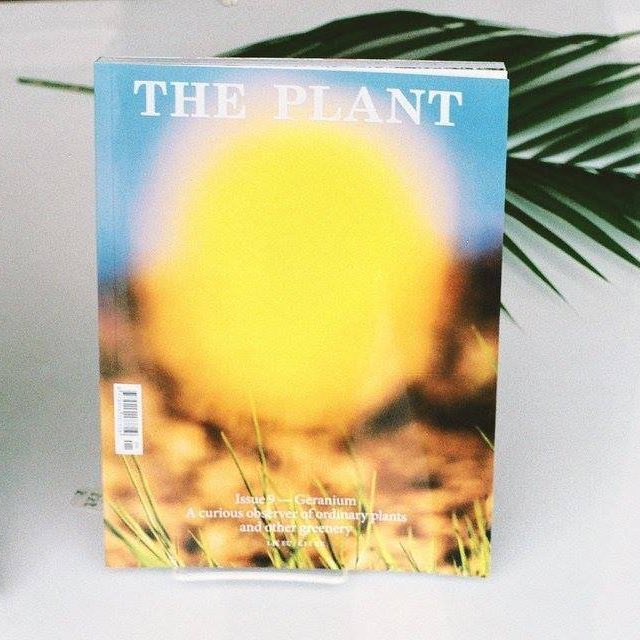 The Plant – 9